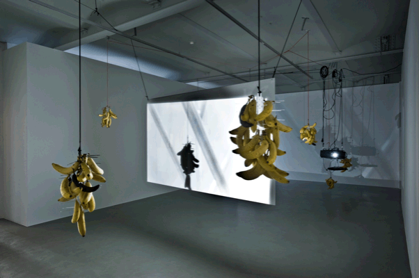 Luca Trevisani, Floating bananas, 2011, Bananas, plastic bird spikes, plexiglass projection screen, projector, digital video, Variable dimensions, Unique, Installation view, Luca Trevisani - Interval Training, Mehdi Chouakri, Berlin 2011