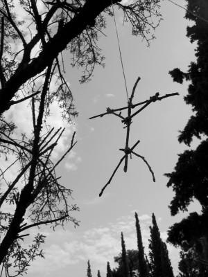 Anastassis Stratakis, Strange Fruit (Untitled #7), 2010, Black and white photograph, 38 x 28.7 cm