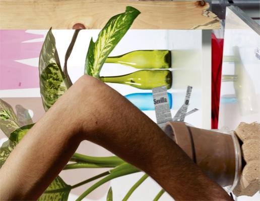 Michele Abeles, Arm, Plant, Bottles, Wood, 2011, archival pigment print, 20 x 25 3/4 in/ 50.8 x 65.74 cm