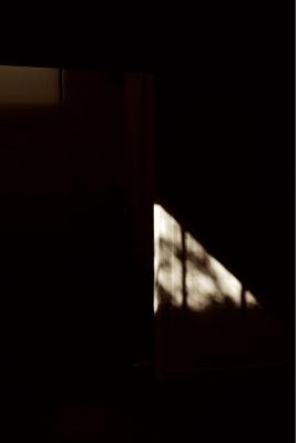 Iris Touliatou, Cast IV, Study for sun exposure, Research photograph