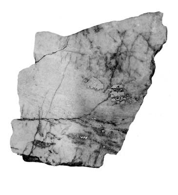 """polymeric recrystallized carbonate"", Zoe Giabouldaki, 2011"